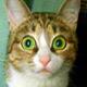 Аватар пользователя 6yrara3