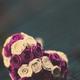 Аватар пользователя Mic2Skin