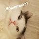 Аватар пользователя KramAl1ce