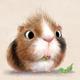 Аватар пользователя ZoRg