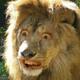 Аватар пользователя Meyasma