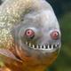 Аватар пользователя Alzag