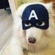Аватар пользователя Kurgusya