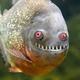 Аватар пользователя all4kenny