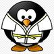 Аватар пользователя judoka