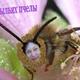 Аватар пользователя gdesazykina20
