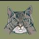 Аватар пользователя Silverfenix
