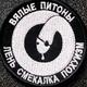 Аватар пользователя Segezha