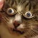 Аватар пользователя Omichhh