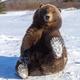 Аватар пользователя Samoylichenko