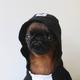 Аватар пользователя MuShuTheDragon