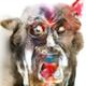 Аватар пользователя KekSamat