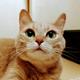 Аватар пользователя didipandi