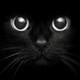 Аватар пользователя v1va