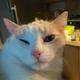 Аватар пользователя Anykeyvrn