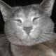 Аватар пользователя didorvp