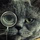 Аватар пользователя ShadowOzzy