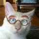 Аватар пользователя vikavica
