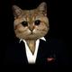 Аватар пользователя MisterMeduzza