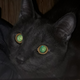 Аватар пользователя Heydjei