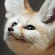 Аватар пользователя hexus16