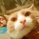 Аватар пользователя riemix