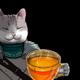Аватар пользователя Semzorro