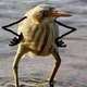 Аватар пользователя Krilya
