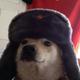 Аватар пользователя HowCanIWin