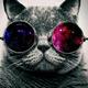 Аватар пользователя lllEvgenlll