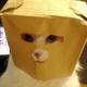 Аватар пользователя Bybonyatka