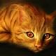 Аватар пользователя pAgajudi45