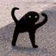 Аватар пользователя RexRegum