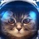 Аватар пользователя GreyGnom