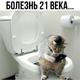 Аватар пользователя ssvk