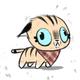 Аватар пользователя pcmage