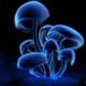 Аватар пользователя Sid52