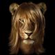 Аватар пользователя OlgaBush