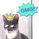 Аватар пользователя Koshkupoteryali