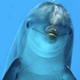 Аватар пользователя notvirus.exe
