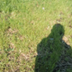 Аватар пользователя nfn001