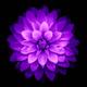 Аватар пользователя Satorii