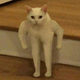 Аватар пользователя stasbern