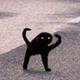 Аватар пользователя Nikton
