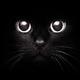 Аватар пользователя Akeks