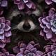 Аватар пользователя KattyLat