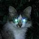 Аватар пользователя SStown