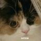 Аватар пользователя LoveTRS