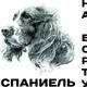 Аватар пользователя Ksushechka84