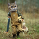 Аватар пользователя kogohochu
